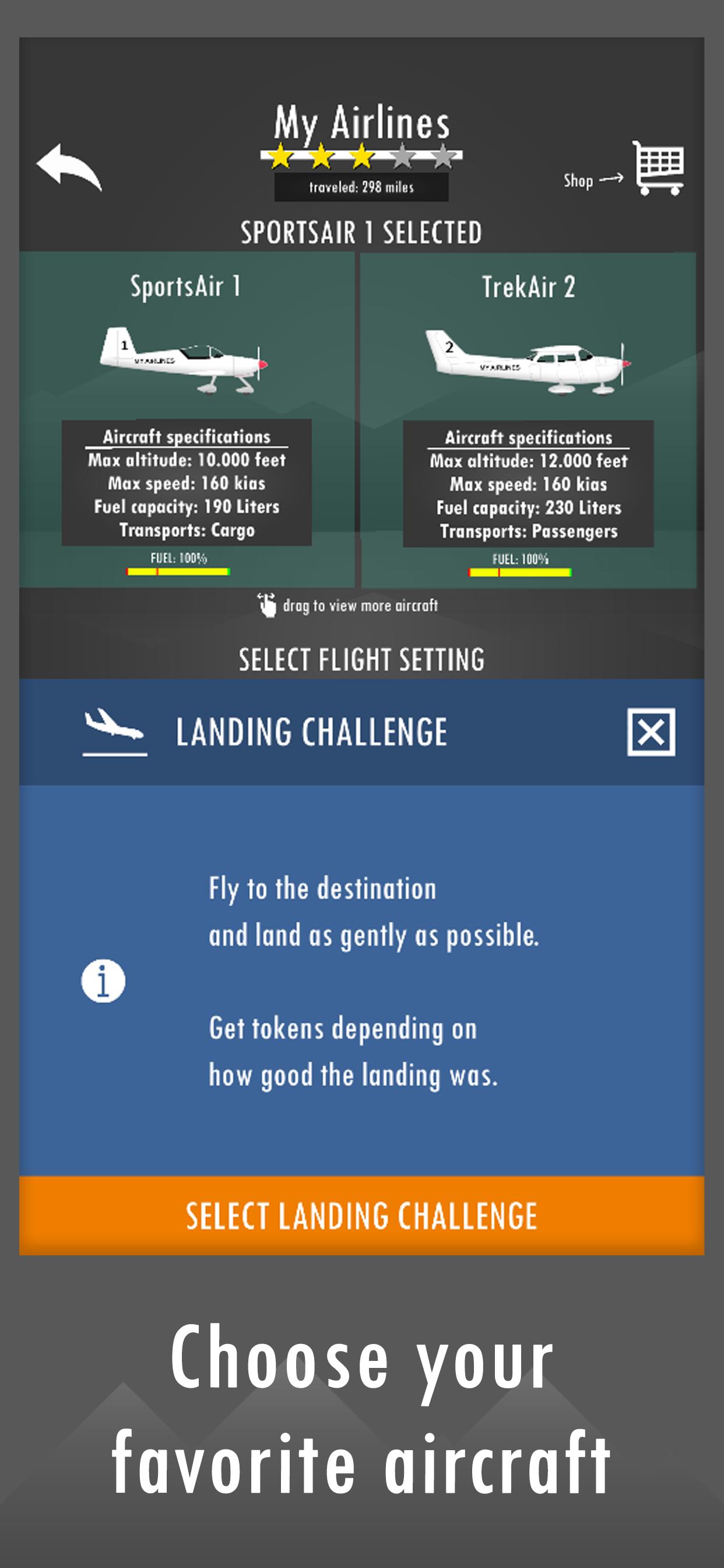 Screenshot 2: Flight Simulator 2d